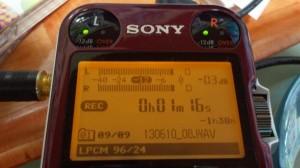 2013061004