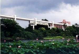 千葉公園から撮影