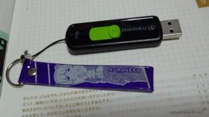 USBメモリにコピーした